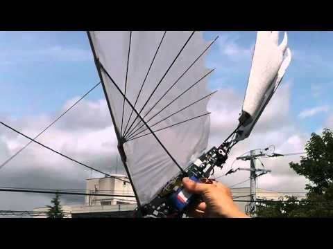 Deadly Nadder 16-1  Dragon Ornithopter : First Test Flight