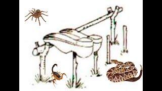 Estrutura para secar ou para proteger seu tênis de animais perigosos em acampamentos e pescarias.