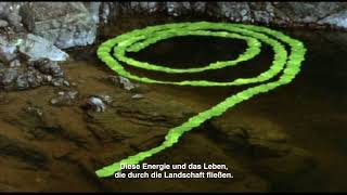 Rivers And Tides – Andy Goldsworthy Working With Time (OmU) - Trailer