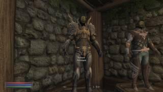 Tera armor female mod - 123Vid