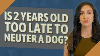 Is 2 years old too late to neuter a dog?