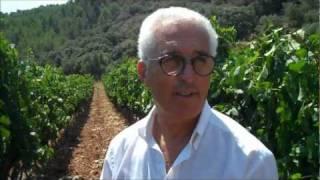 preview picture of video 'Bodega Es Verger en Esporles Mallorca'