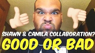 Shawn Mendes & Camila Cabello Collab? GOOD OR BAD