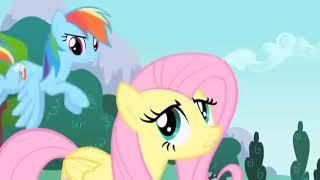 Идиальное май лител пони