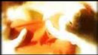 diRTy WoRMz - Black Piranah