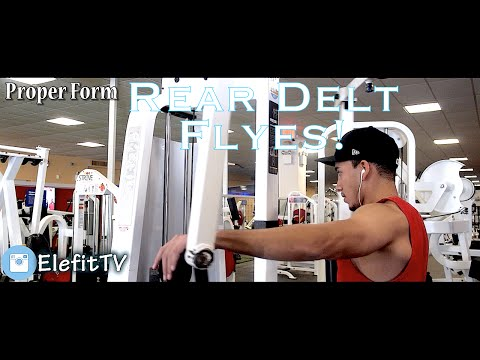 How To Properly Target Rear Delts On Reverse Fly Machine