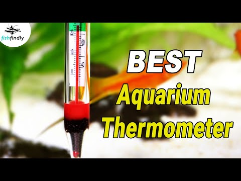 Best Aquarium Thermometer in 2019 – For Water Temperature