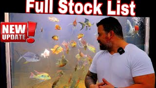 Full fish stock, everything we have for sale now! Lots of awesome fish