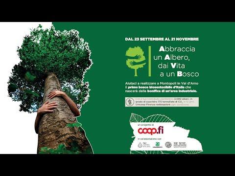 Abbraccia un albero, dai vita a un bosco