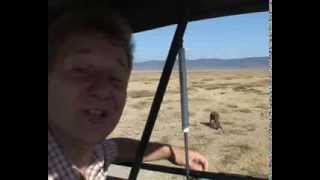 preview picture of video 'Ngorongoro Krater i Tanzania  -- verdens syvende, naturlige vidunder fra Rejseprogrammet.dk'