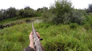 Идем охотиться на утку осенним днем - Видео онлайн