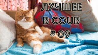 ЛУЧШИЕ ПРИКОЛЫ 2017/ НАРЕЗКИ 09/СМЕХ ДО СЛЕЗ 2017