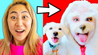 I TRANSFORMED INTO MY DOG FOR A DAY!! (HALLOWEEN TRANSFORMATION)