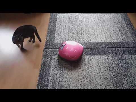 Test des LG HomeBot Roboterstaubsauger