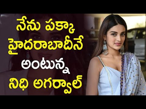 Nidhhi Agerwal LifeStyle Biography  Net Worth  Favourites  Family And Gallery 2019