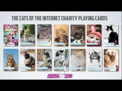 Famous Cats of the Internet Charity Playing Cards – Amazing Cats for an Amazing Cause!