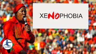 Julius Malema Condemns Recent South African Xenophobic Attacks