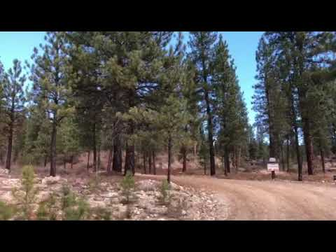 Cowboy Campground Overview