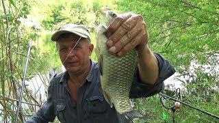 Оказывается и днем хорошо ловится рыба на реке. Фидер. Мои крючки, катушка. Карась.