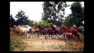 Nad stádem koní+text Buty