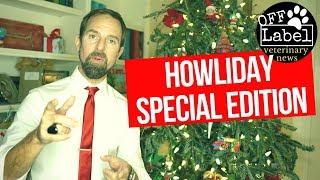 Do Animals Talk on Christmas Eve, The Donkey Cross, Veterinarian Writes Hit Song, Awkward Pet Pics!