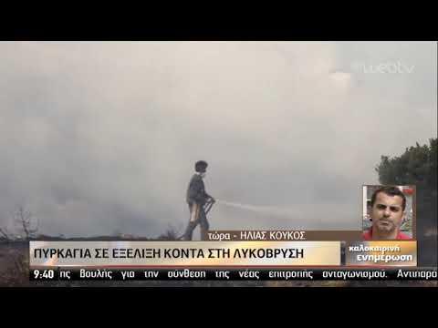 Υπό μερικό έλεγχο η πυρκαγιά στη Λυκόβρυση-Άμεση κινητοποίηση της Πυροσβεστικής | 28/09/2019 | ΕΡΤ