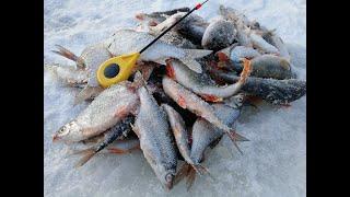 Рыбалка в верховье оби