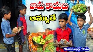 jamakayalu ammuthe || my village comedy || village show ||guava|| telugu letest all