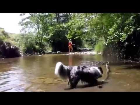Ballade dans la rivière