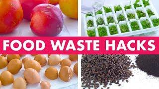 Food Waste Hacks! - Mind Over Munch