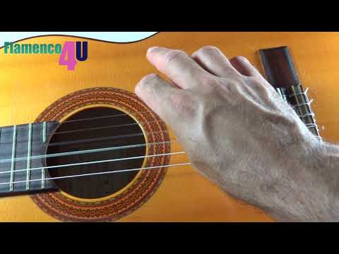 What are the Basic Flamenco Finger Techniques?