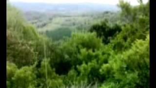 preview picture of video 'caccia in maremma'