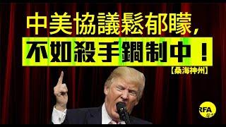 【桑海神州】 2019年4月3日 中美協議「鬆郁矇」,不如殺手鐧制中!
