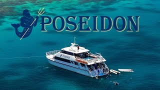 Poseidon Great Barrier Reef Tour from Port Douglas
