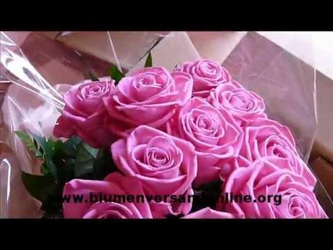 Li❶il Aldi Blumen Versenden Test Testsieger Bestseller Top