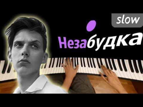 Незабудка (SLOW) ● караоке | PIANO_KARAOKE ● + НОТЫ & MIDI | Тима Белорусских