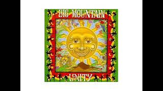 Big Mountain   Revolution   1994