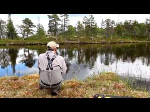 Matt Hayes fisker efter ørreder i det norske fjeld