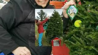 Burke Chamber Christmas Tree