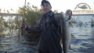 Набережные челны рыболовный клуб