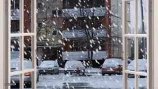 Игорь Тальков - У твоего окна