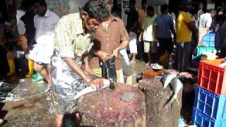preview picture of video 'Sri Lanka,ශ්රී ලංකා,Colombo,කොළඹ,St John's Fish Market,Fishcutter (02)'