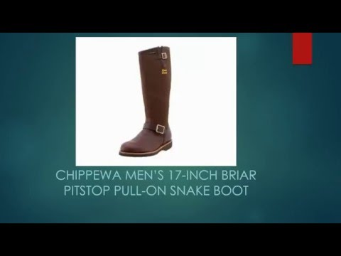 Chippewa Men's 17-Inch Briar Pitstop Pull-On Snake Boot