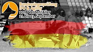 Bundessiegerprüfung BSP 2018 IPO  Schutzhund Championships