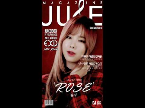 [Solji of EXID] ROSE