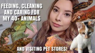 My Daily Pet Care Routine With ALL My Animals!   Feedings + Visiting Pet Stores   Vlogmas Day 3
