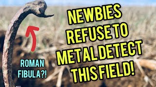 Why won't beginners detect this field? Metal Detecting UK #204