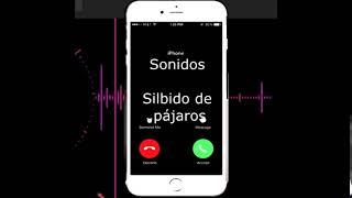 Descargar sonidos Silbido de pájaros para celular - Tonosdellamadagratis