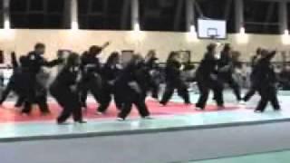 Gala arts martiaux Nice Groupe