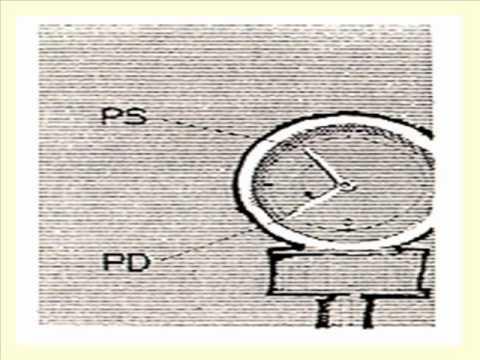 Redução da pressão arterial pulseira
